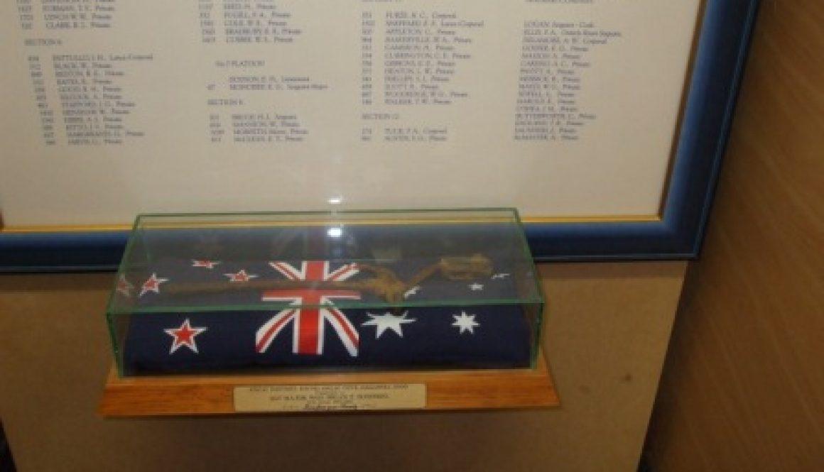 Bayonet-ANZAC Cove